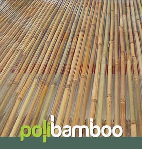 Komůrkový polykarbonát výplň bambus - 1/4